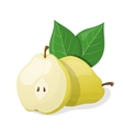 One pear and half of pear vector