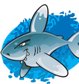 Cartoon oceanic white tip shark vector