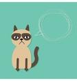 Cute sad grumpy siamese cat and scribble speech vector