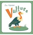 Letter v - vulture vector