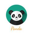 Panda portrait vector