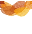 Dry autumn leaves template eps 10 vector
