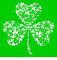 Green greeting card with clover shamrock vector