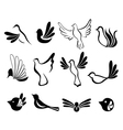 Abstract bird symbol set vector