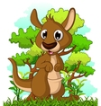 Kangaroo cartoon with forest background vector