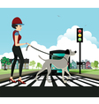 Woman walking dog vector