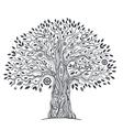 Unique ethnic tree of life vector