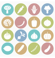 White icons vegetable vector