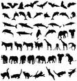 Animal wild and pet black silhouette vector