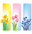 Spring flowers banners vector