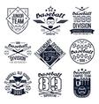 College baseball team emblems vector