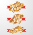Decorative text banner vector
