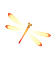 Icon dragonfly vector
