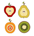 Fruit items cut in half isolated on white vector