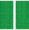 Soccer field grass line vector
