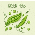 Green peas with text above vector