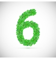 Number six made up of green leaves vector