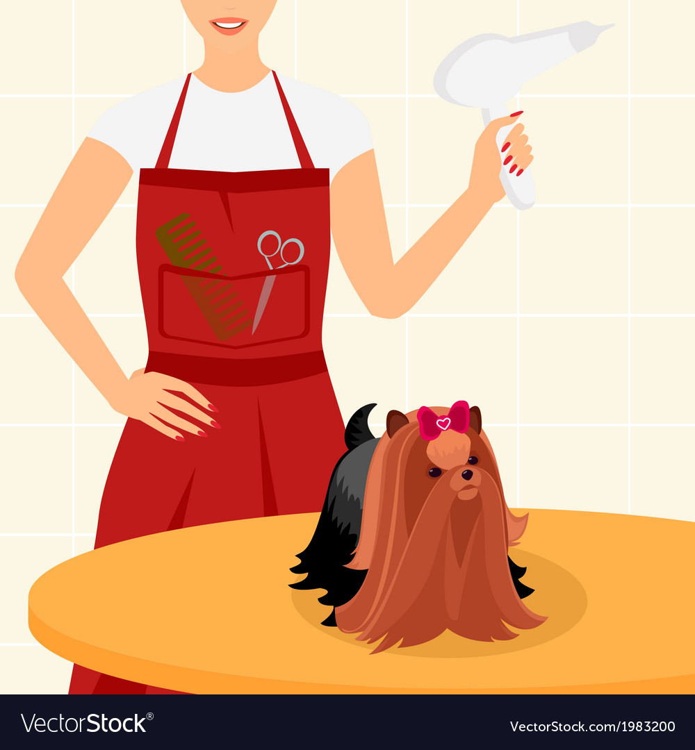 Professional dog grooming for yorkshire terrier vector | Price: 1 Credit (USD $1)