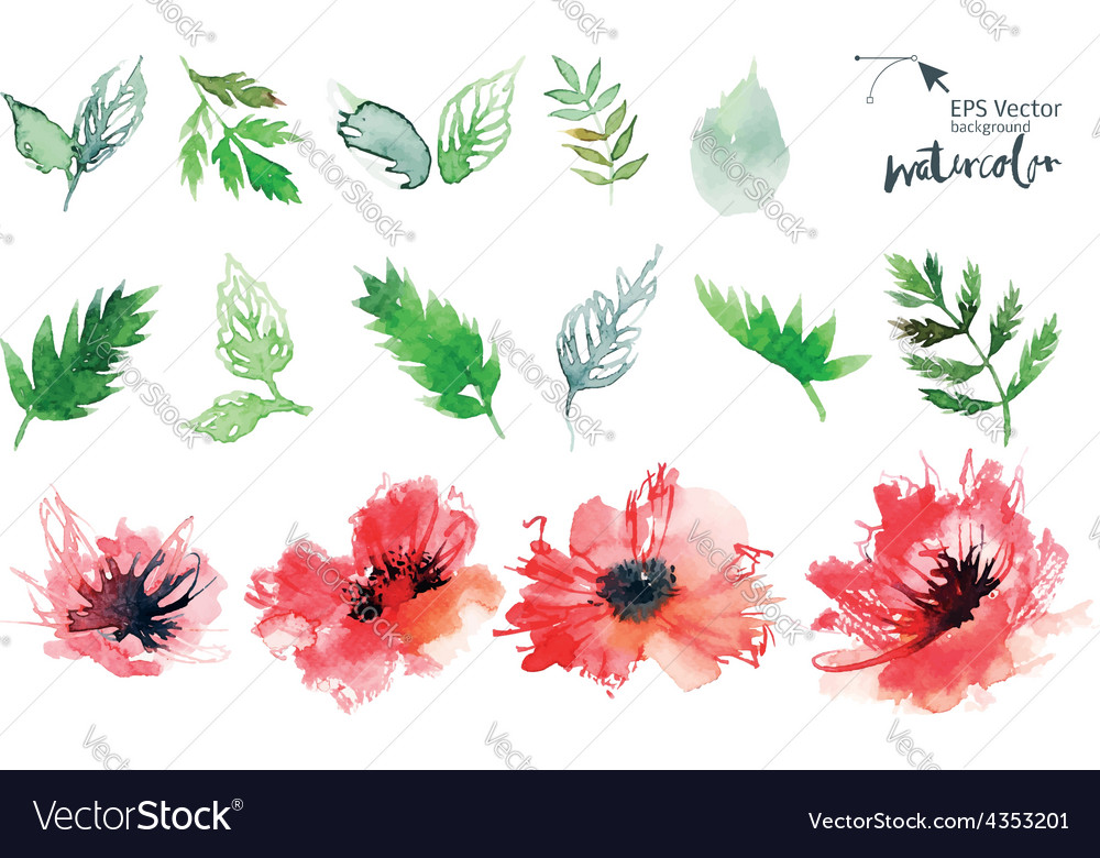 Watercolor cet vector | Price: 1 Credit (USD $1)