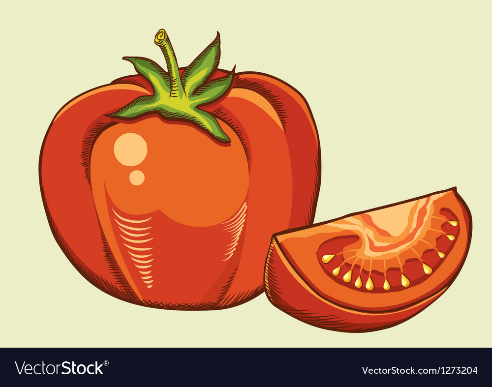 Red tomatos fresh vegetable vector | Price: 3 Credit (USD $3)