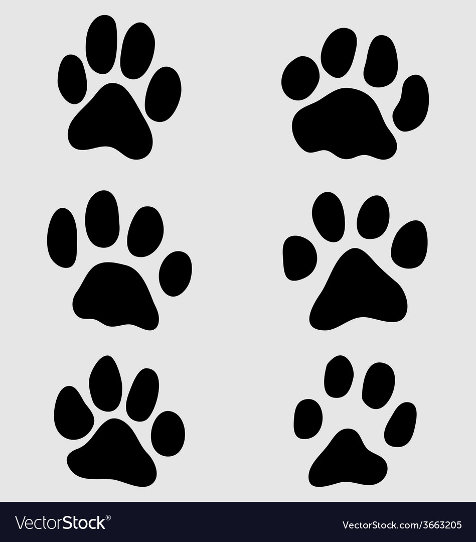 Paw of cats vector | Price: 1 Credit (USD $1)