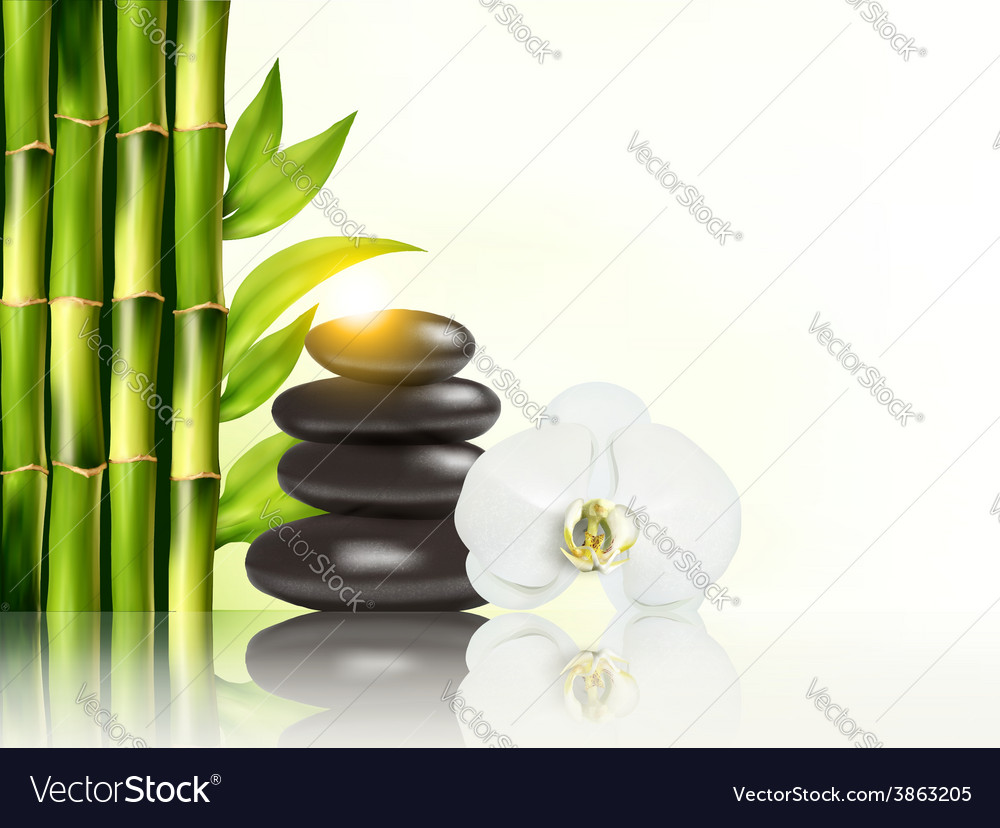 Spa background with bamboo and stones vector | Price: 3 Credit (USD $3)
