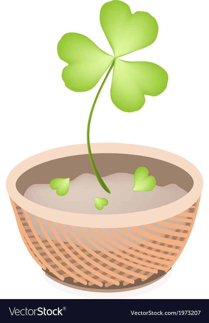 A brown basket of four leaf clovers vector | Price: 1 Credit (USD $1)