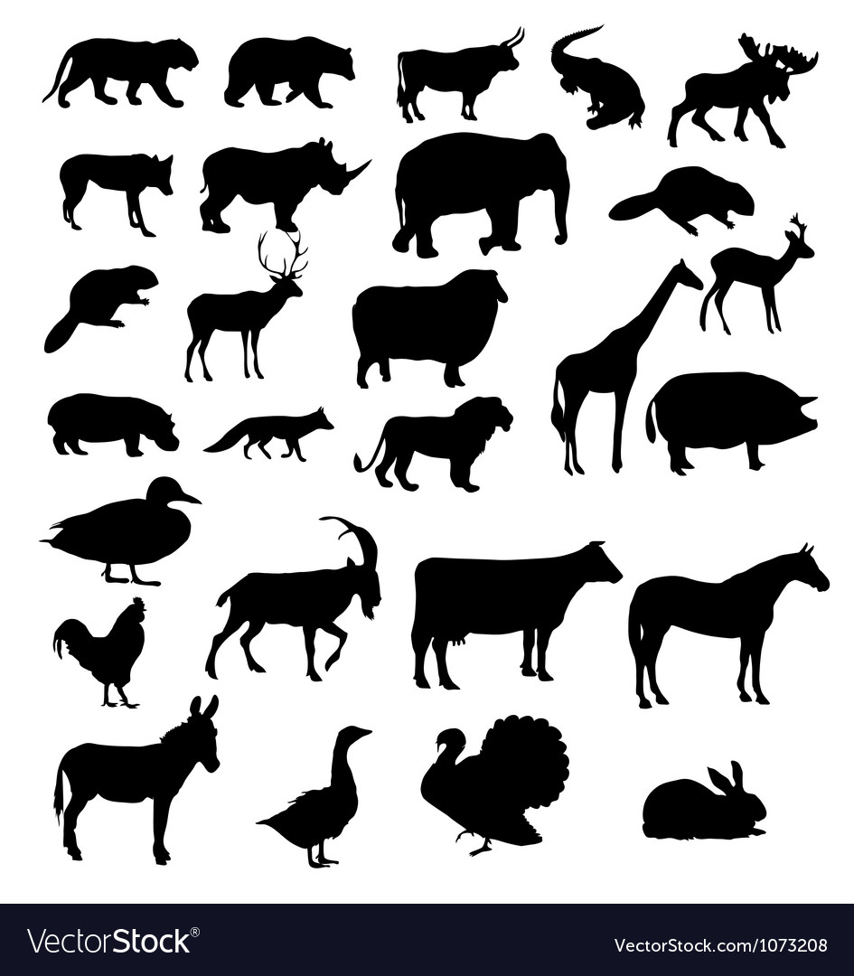 Set of animals silhouette vector | Price: 1 Credit (USD $1)