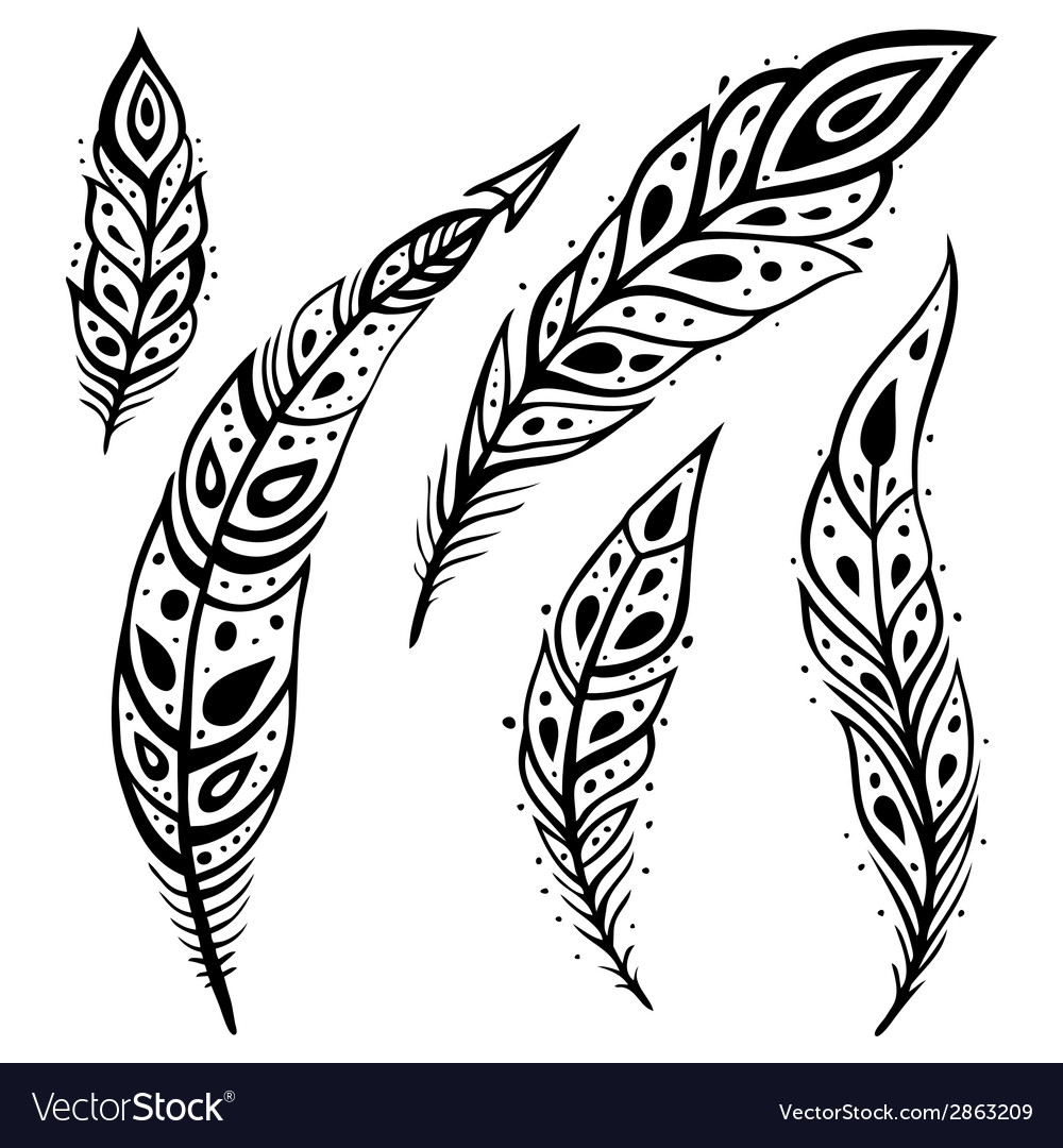 Peacock feather set vector | Price: 1 Credit (USD $1)