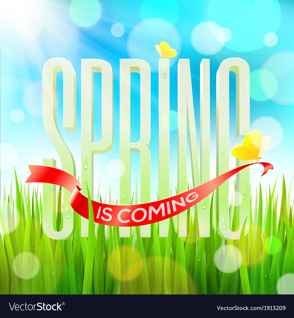 Spring greeting letters on a sunny field vector | Price: 1 Credit (USD $1)