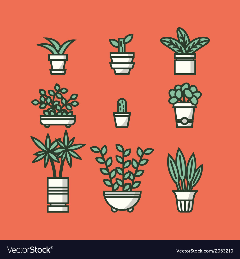 Set of houseplants in pots vector | Price: 1 Credit (USD $1)