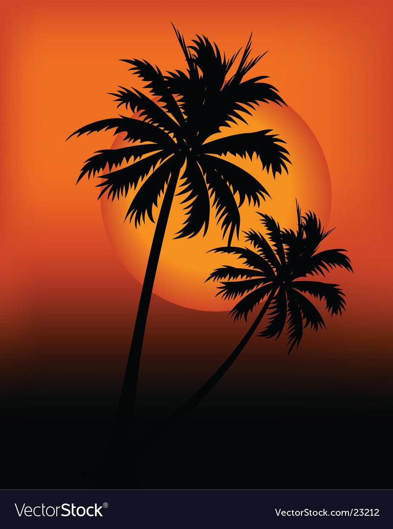 Sunset design vector | Price: 1 Credit (USD $1)
