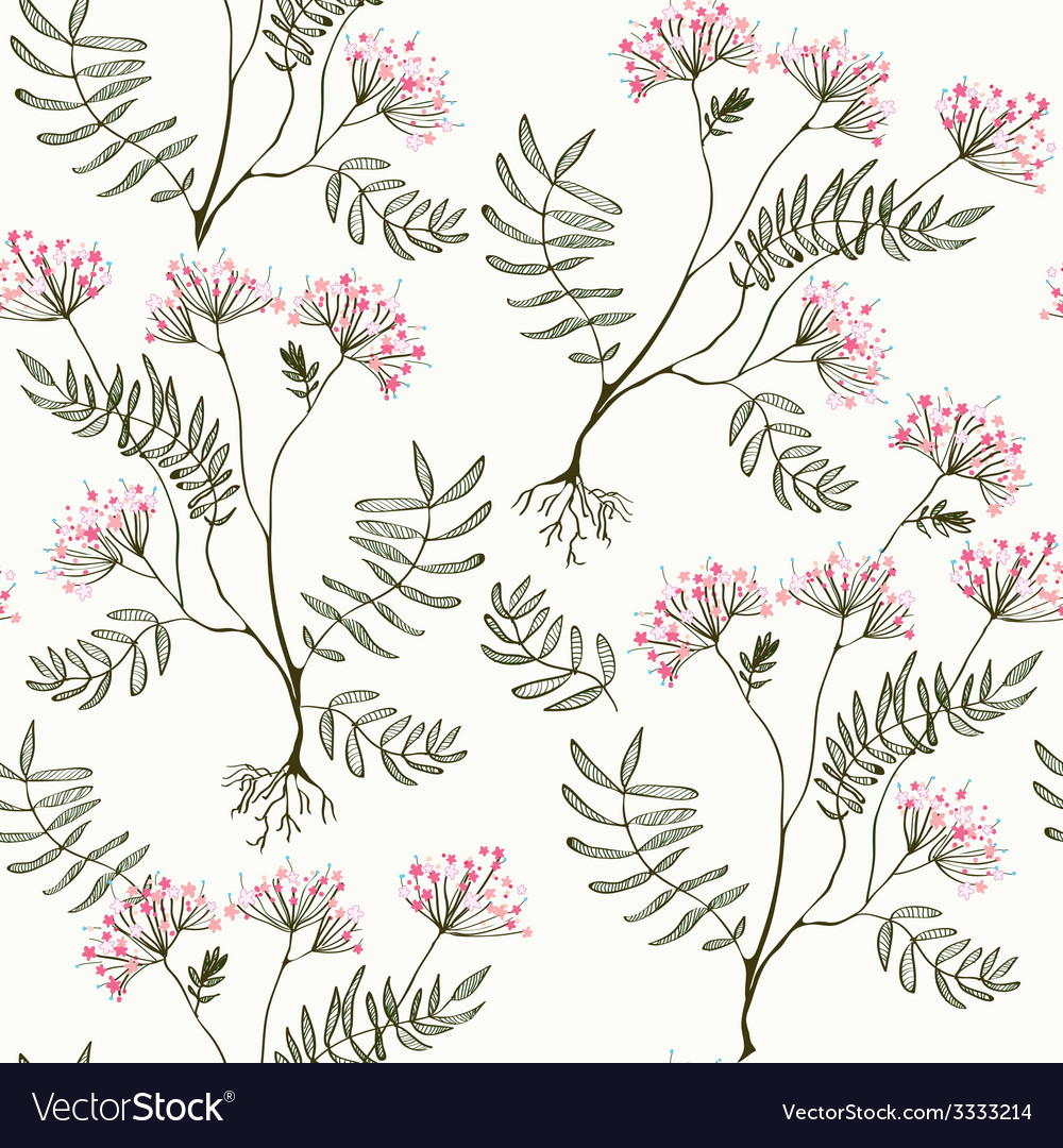 Valeriana seamless pattern - medicine for heart vector | Price: 1 Credit (USD $1)