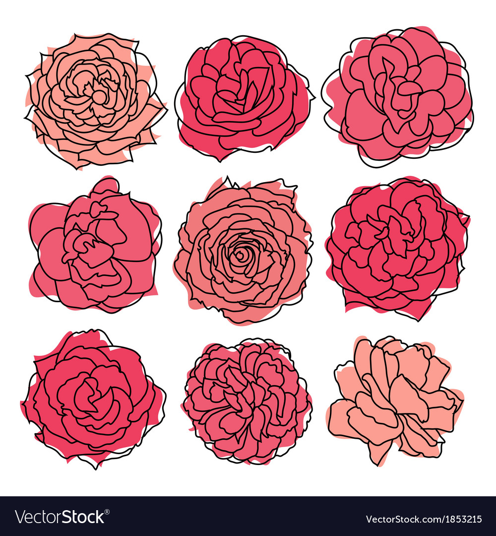 9 decorative roses vector | Price: 1 Credit (USD $1)