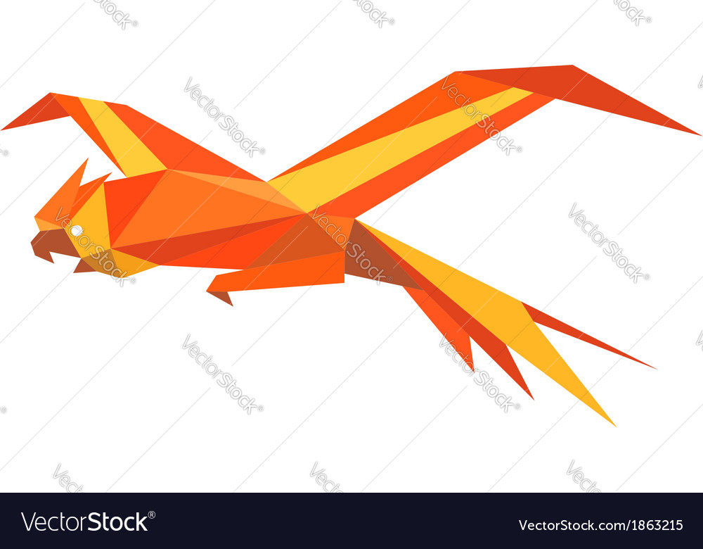 Flying macaw parrot vector | Price: 1 Credit (USD $1)