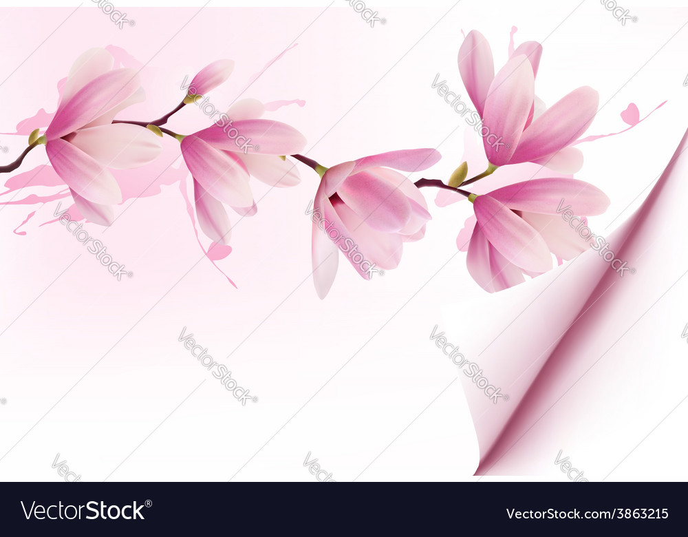 Spring background with blossom brunch of pink vector | Price: 3 Credit (USD $3)