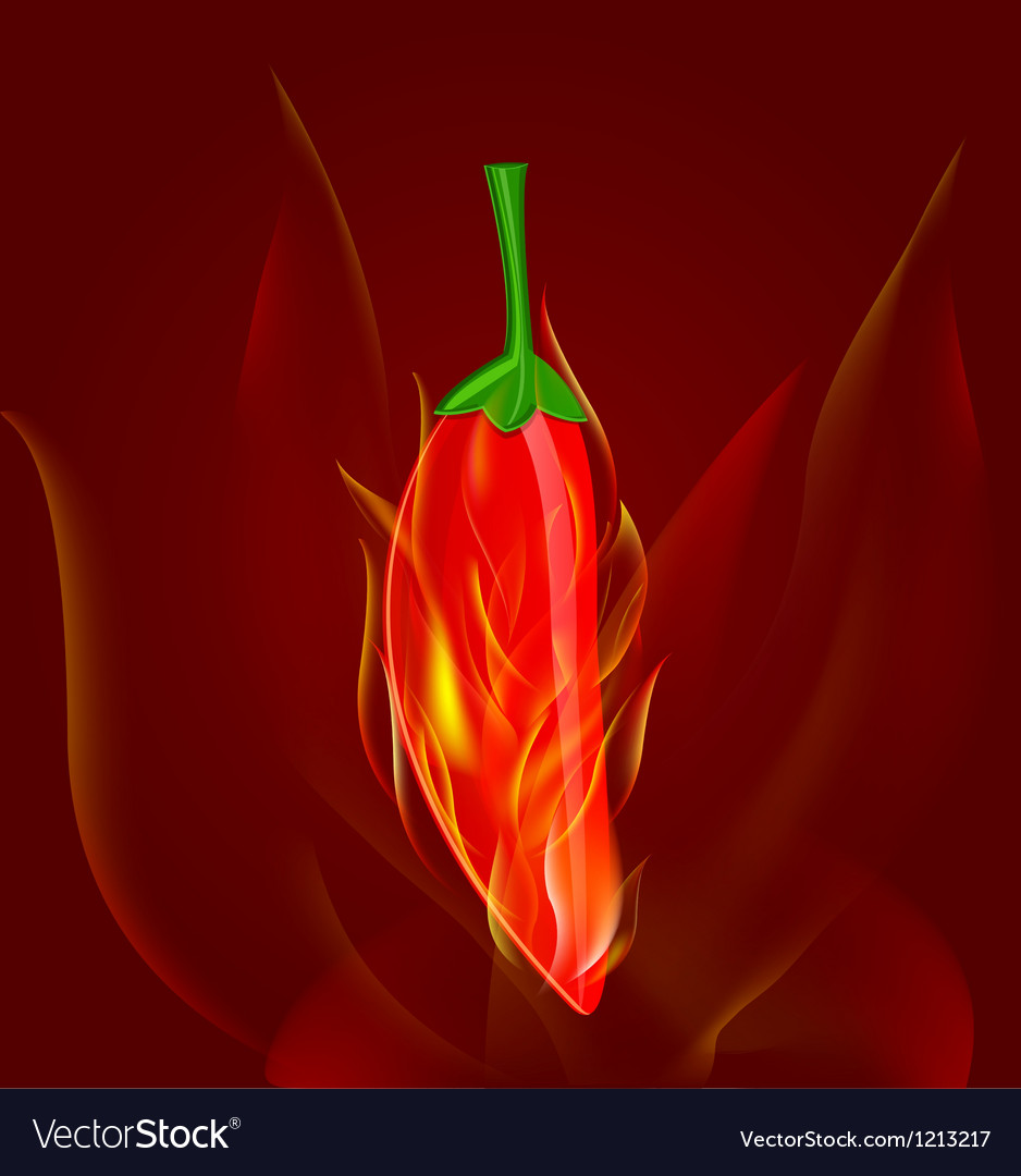 Red chili pepper in fire vector | Price: 3 Credit (USD $3)