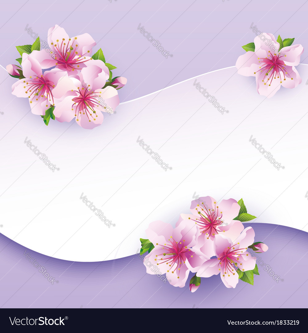 Floral background greeting card with flower sakura vector | Price: 1 Credit (USD $1)