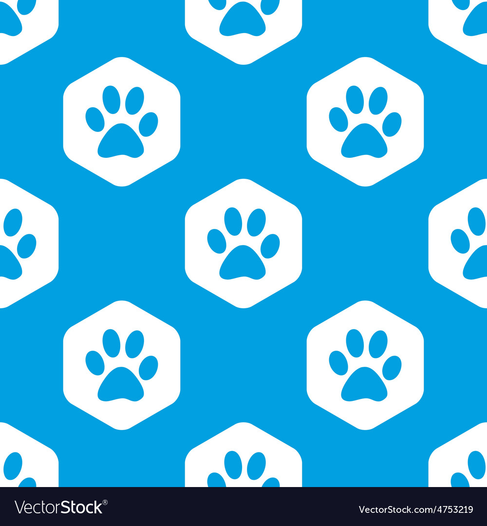 Paw hexagon pattern vector | Price: 1 Credit (USD $1)