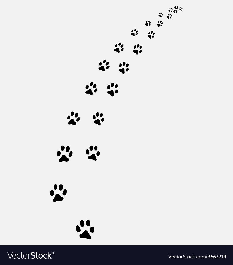 Trail of cats vector | Price: 1 Credit (USD $1)