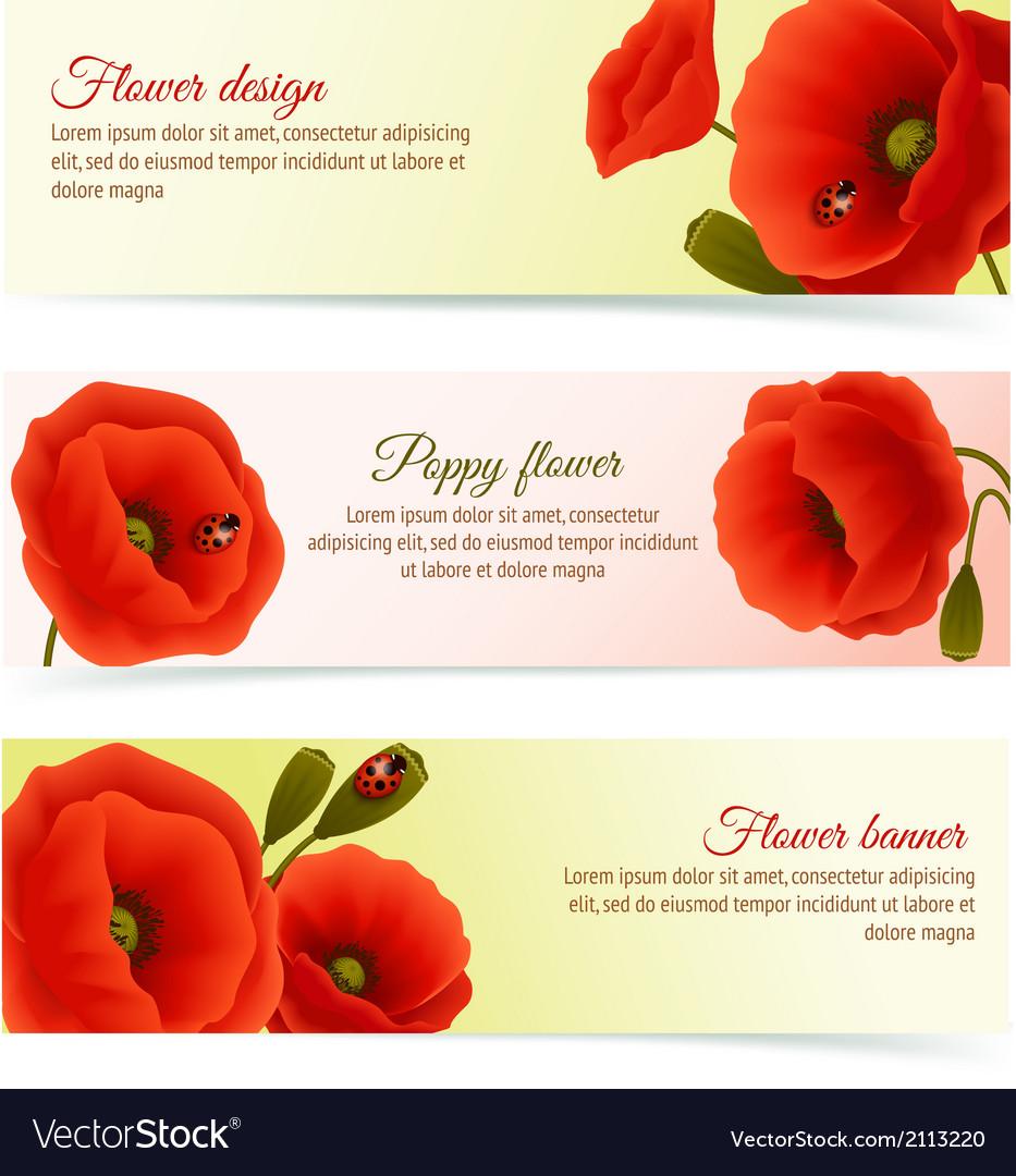 Poppy horizontal banner set vector   Price: 1 Credit (USD $1)