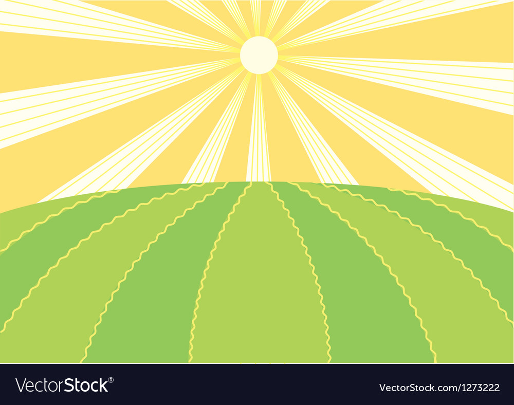 Summer field vector | Price: 1 Credit (USD $1)