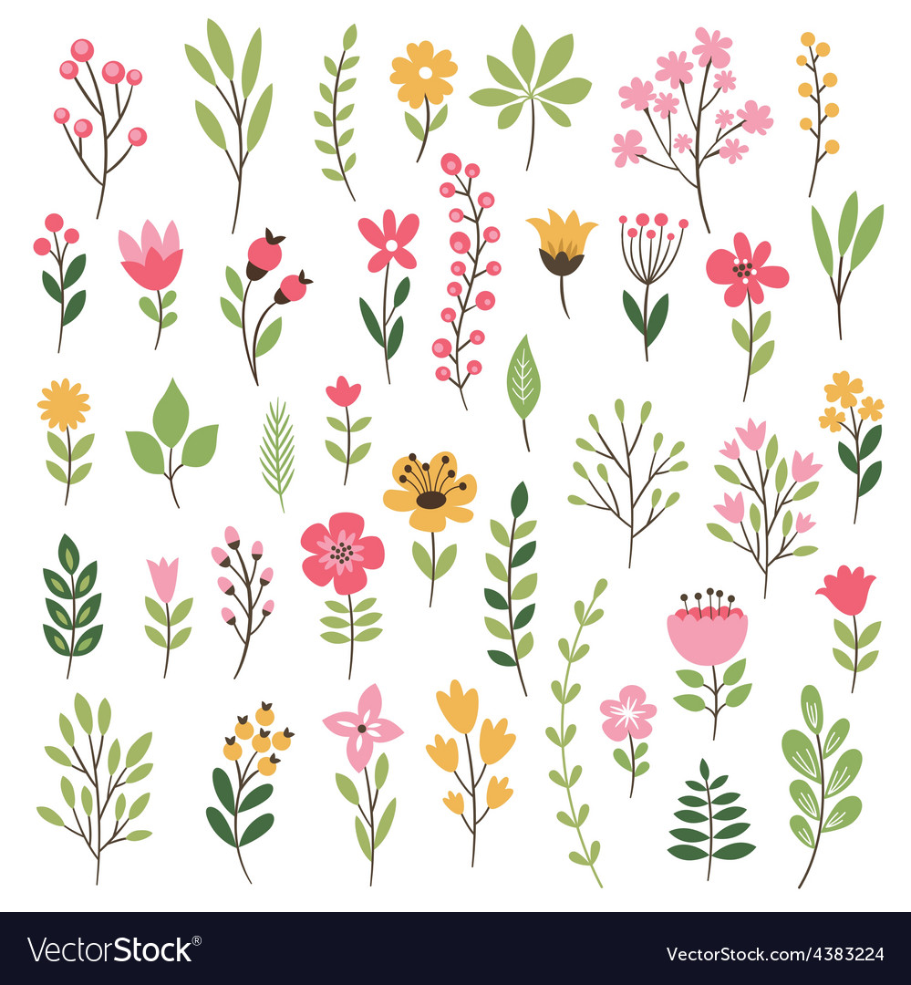 Colorful floral collection with leaves and flowers vector | Price: 1 Credit (USD $1)
