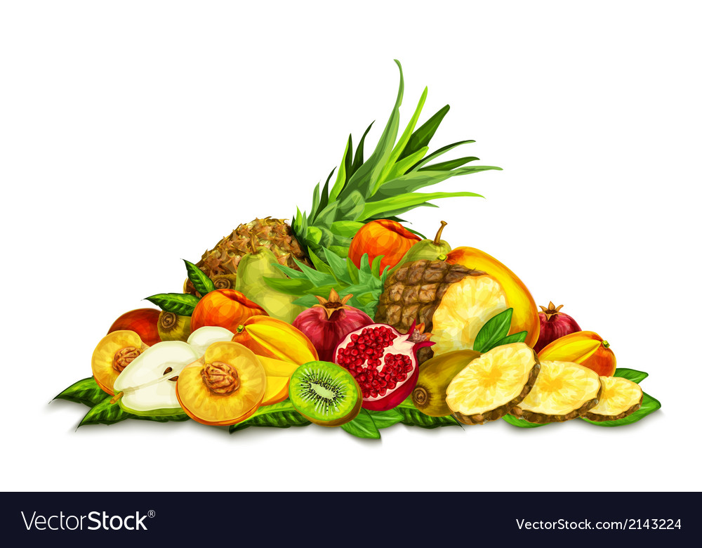 Tropical fruits set still life vector | Price: 3 Credit (USD $3)