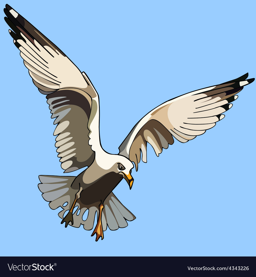 White bird seagull in flight vector | Price: 3 Credit (USD $3)