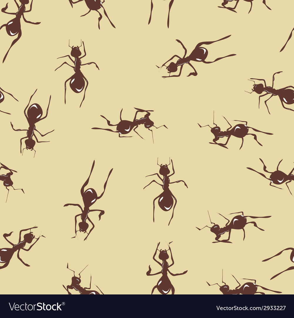 Seamless pattern with cute many brown ants on vector | Price: 1 Credit (USD $1)