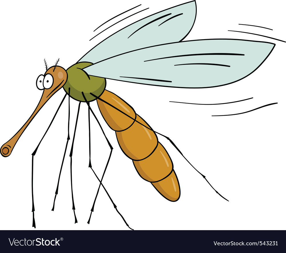 Mosquito vector | Price: 1 Credit (USD $1)