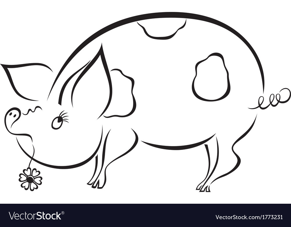Spoony funny piggy vector | Price: 1 Credit (USD $1)