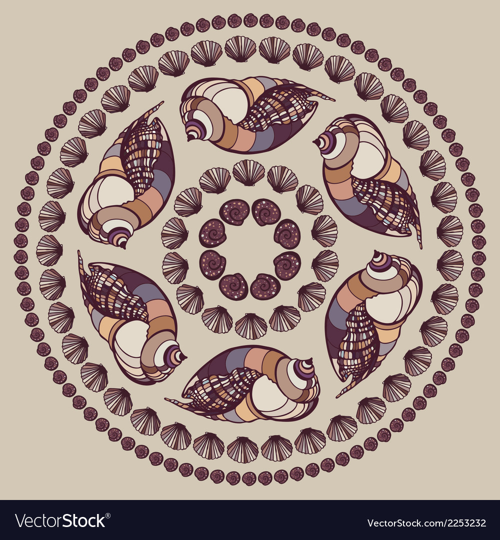 Mandala made of seashells vector | Price: 1 Credit (USD $1)