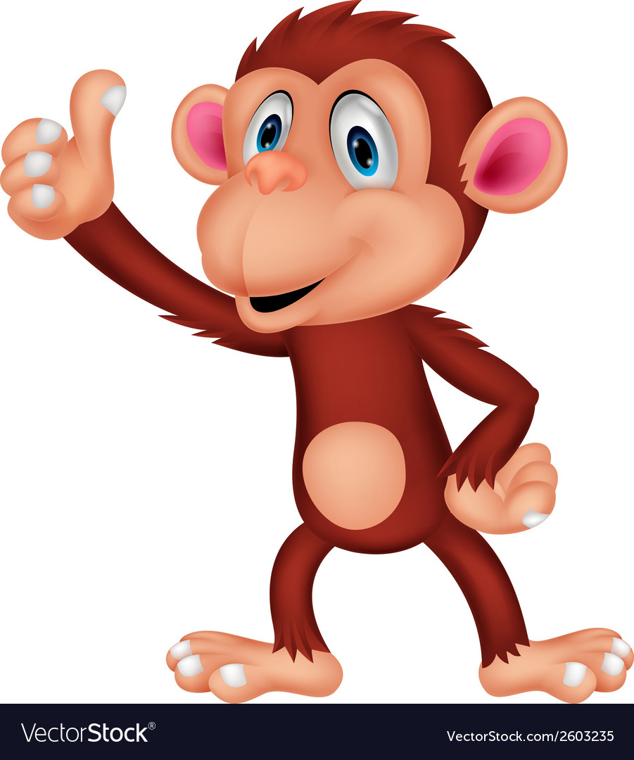 Cute monkey cartoon vector | Price: 1 Credit (USD $1)